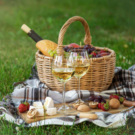 Two glasses of white wine, cheese, fruits. Picnic, outdoor dinner on a green lawn, selective focus, square image