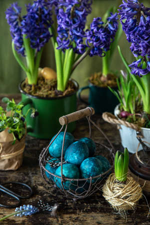 colored blue Easter eggs in vintage basket with spring hiacinth flowers, dark rustic background Banco de Imagens