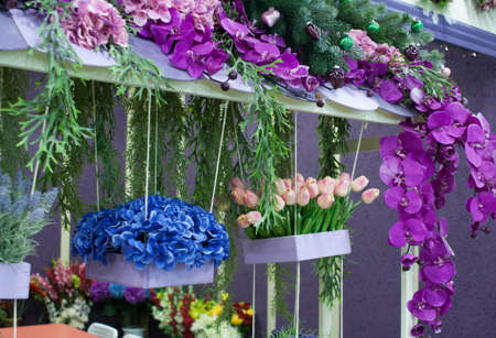 blue, purple and pink flowers. Tulips in a pot. Flower shop. Stock Photo