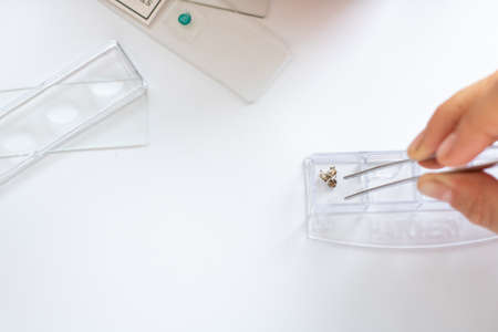 A child studies a dried insect in a home laboratory. Stock fotó