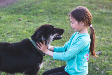 The girl gently looks in the big dog eyes. Friendship between child and animal