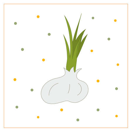 Vector card with vegetables. 向量圖像