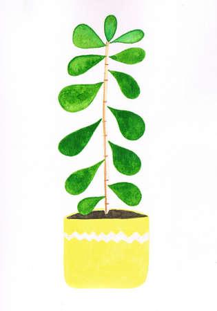 Green watercolor lucky tree in a yellow lemony pot handmade