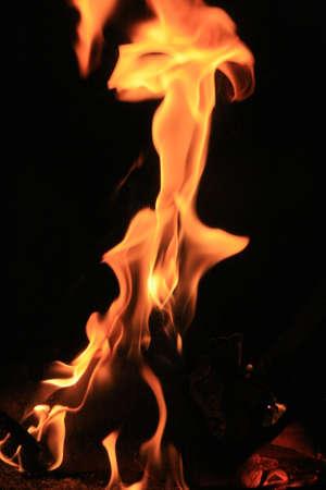fire flower: Bright fire flower Stock Photo