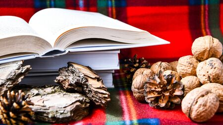 Autumn composition, nuts pieces of bark, opened books on red coat, winter decor, home interior