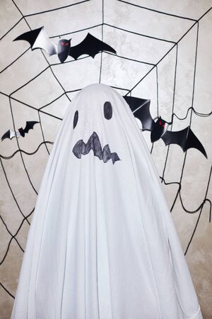 Halloween portrait of child dressed in ghost costumes posing at camera with cobweb and bats in the background