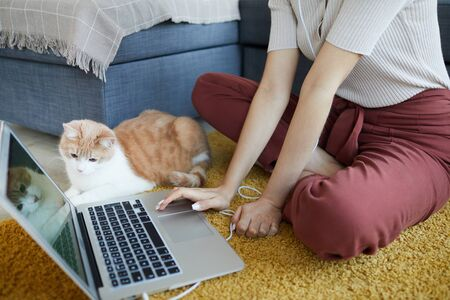 Close-up of woman sitting on the carpet and typing on computer keyboard with her cat sitting near by and watching for her owner