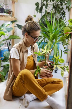 Young florist in eyeglasses sitting on the floor holding flower in the pot in her hands and looking at it Stock Photo