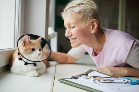 Mature woman with short blond hair smiling and touching her cat while it sitting on windowsill in collar they are in vet clinic