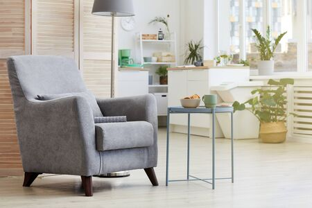 Image of cosy modern armchair in the living room at house