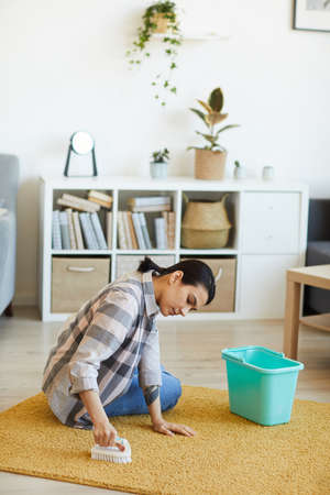 Young woman cleaning the carpet with brush in the living room at home Stock Photo