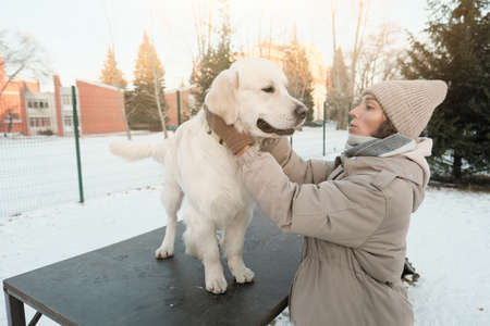 Young woman training pedigree dog in winter outdoors