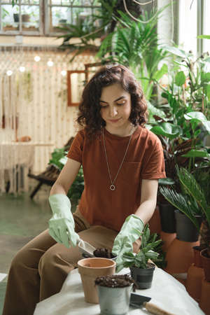 Young woman planting green plant in pots while sitting in the garden