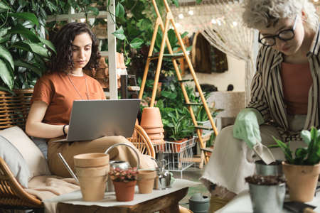 Young florist sitting on sofa and typing on laptop she working in the garden together with her colleague who planting plants