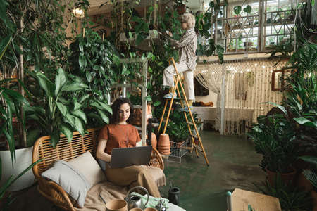 Young woman sitting on sofa and working on computer with florist standing on the ladder and caring about plants