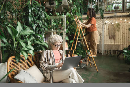 Woman working on laptop in the flower shop with her colleague caring about plants in the background