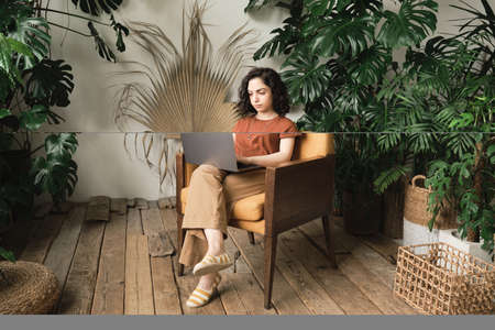 Young woman sitting on armchair and working online using laptop in the room with wooden floor and green plants