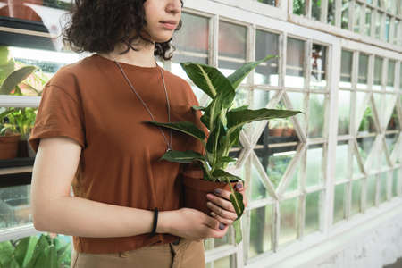 Close-up of woman holding potted plant in her hands while working in botany garden
