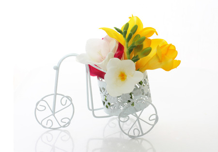 Beautiful freesia flowers  in cute vintage bike over white photo