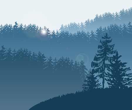 larch: Vector Illustration of Forest and mountains in Skaetch style for Design, Website, Background, Banner. Fir tree silhouette Element Template