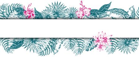 Palm Leaf Sketch11. Illustration