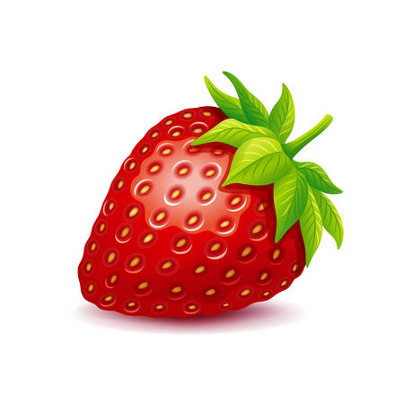 Vector illustration of strawberry with leaves isolated on a white.