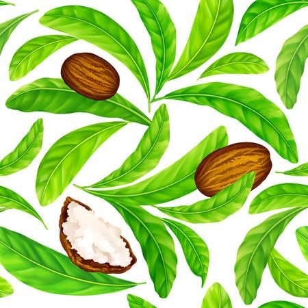Noix de karité avec des feuilles en modèle vectoriel. Modèle sans couture de vecteur de noix de karité avec du beurre de karité et des feuilles vertes isolés sur un blanc. Vecteurs
