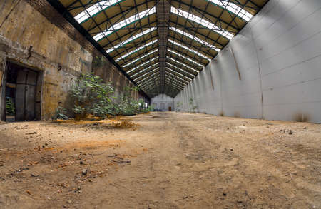 Abandoned industrial interior with bright light and some plants Stock Photo - 22758340