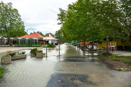 balaton: Flooded terrain in Balaton Stock Photo