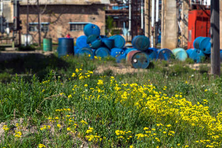 toxic waste: Several barrels of toxic waste at the dump