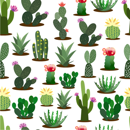 Shelf with cactus. pattern
