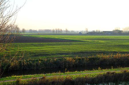 polder: Green polder view in Sluis, Zeeland, the Netherlands, Europe