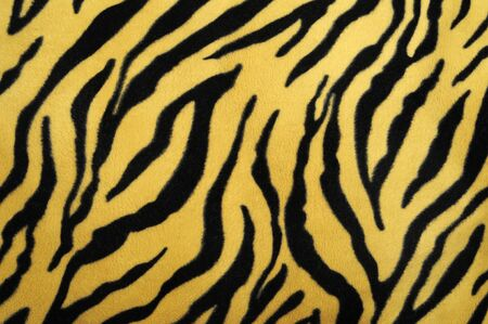 pattern of a tiger skin, excellent wildlife background Stock Photo