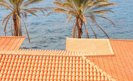 Two palms and an orange tiled roof in the winter sun, Atlantic Ocean in the back, Tenerife, room for text Stock Photo