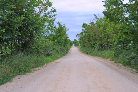 vanishing point: country road with overgrown vanishing point Stock Photo