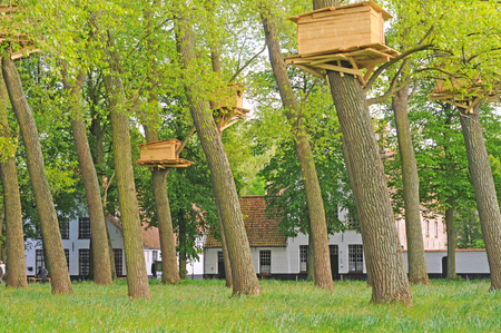BRUGES, BELGIUM - MAY 16 2015: Tree huts in the beguinage, art by the Japanese Tadashi Kawamata for the first edition of Bruges triennial exhibition 'Artwork in Progress' till October 18