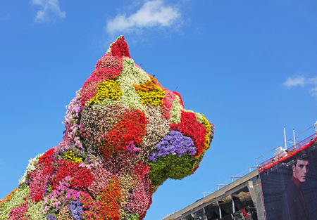 BILBAO, SPAIN – JULY 7, 2015: Detail of Puppy, sculpture of a west highland white terrier dog executed in flowers by the American kitch artist Jef Koons. Part of the collection of the Guggenheim museum of modern art since 1997 Editorial