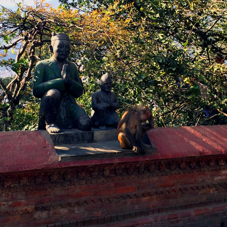 The monkey sits next to the statues. Tired, bored monkey sits on the fence. On the territory of the temple of monkeys in Nepal Stock Photo