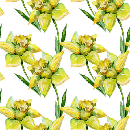 springtime: Seamless watercolor illustration of daffodils in green grass on white background. Banner with springtime motif may be used as background texture, wrapping paper, textile or wallpaper design.