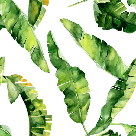 Seamless watercolor illustration of tropical leaves, dense jungle. Pattern with tropic summertime motif may be used as background texture, wrapping paper, textile, wallpaper design. Banana palm leaves. Stock Photo