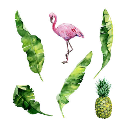 Watercolor illustration set of tropical leaves, dense jungle, flamingo bird and pineapple. Tropic summertime motif may be used as background texture, wrapping paper, textile, wallpaper design.