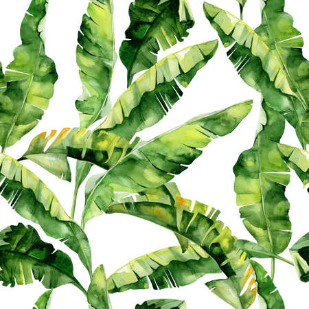 Seamless watercolor illustration of tropical leaves, dense jungle. Pattern with tropic summertime motif may be used as background texture, wrapping paper, textile, wallpaper design. Banana palm leaves
