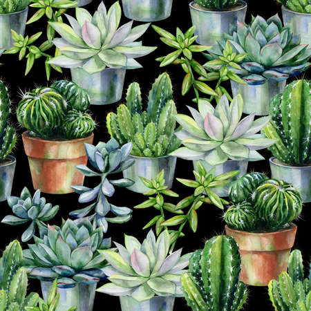 Seamless watercolor pattern with cactus and succulents in pots. Cacti and stone rose illustration for print, home or garden decoration, wrapping paper, textile or wallpaper. Florarium art.