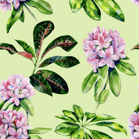 Tropical rhododendron flower seamless pattern watercolor. Interior wallpaper with pink azalea flowers. Exotic plants illustration.