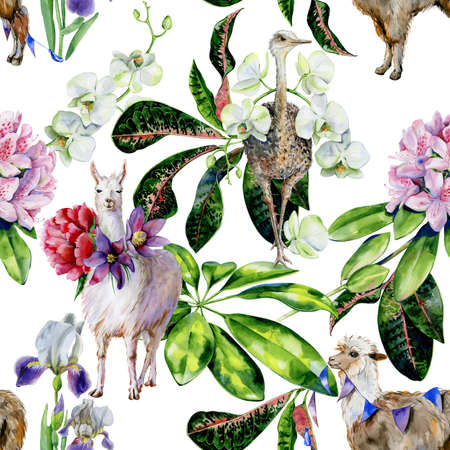 Alpaca, iris flowers and ribbons Tropical leaves of schefflera, croton. Use as nursery wallpaper. 스톡 콘텐츠