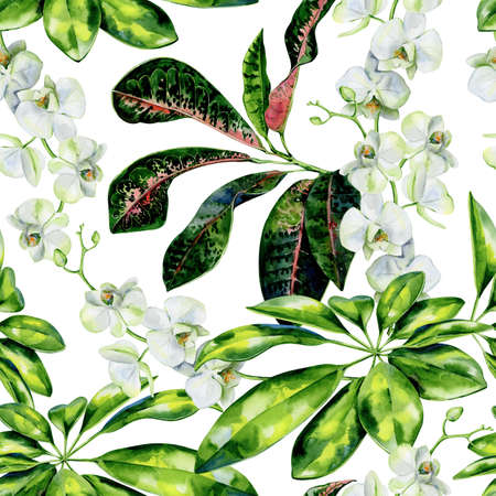 Watercolor seamless pattern, croton and white orchids flowers. Dwarf umbrella tree illustration. Use as wallpaper, textiles, interior decor. Exotic plants print, floral art. 스톡 콘텐츠