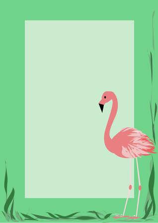 Photoframe with a flamingo Illustration