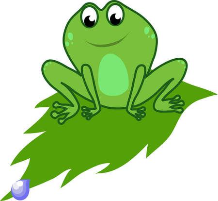 frog on a leaf Illustration