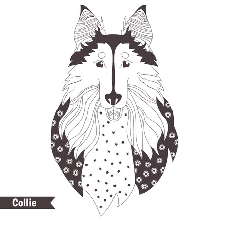 rough: Collie. Coloring book for adult, antistress coloring pages. Hand drawn vector isolated illustration on white background. Henna mehendi, tattoo sketch Illustration