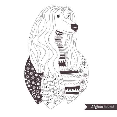 Afghan hound. Coloring book for adult, antistress coloring pages. Hand drawn vector isolated illustration on white background. Henna mehendi, tattoo sketch Illustration